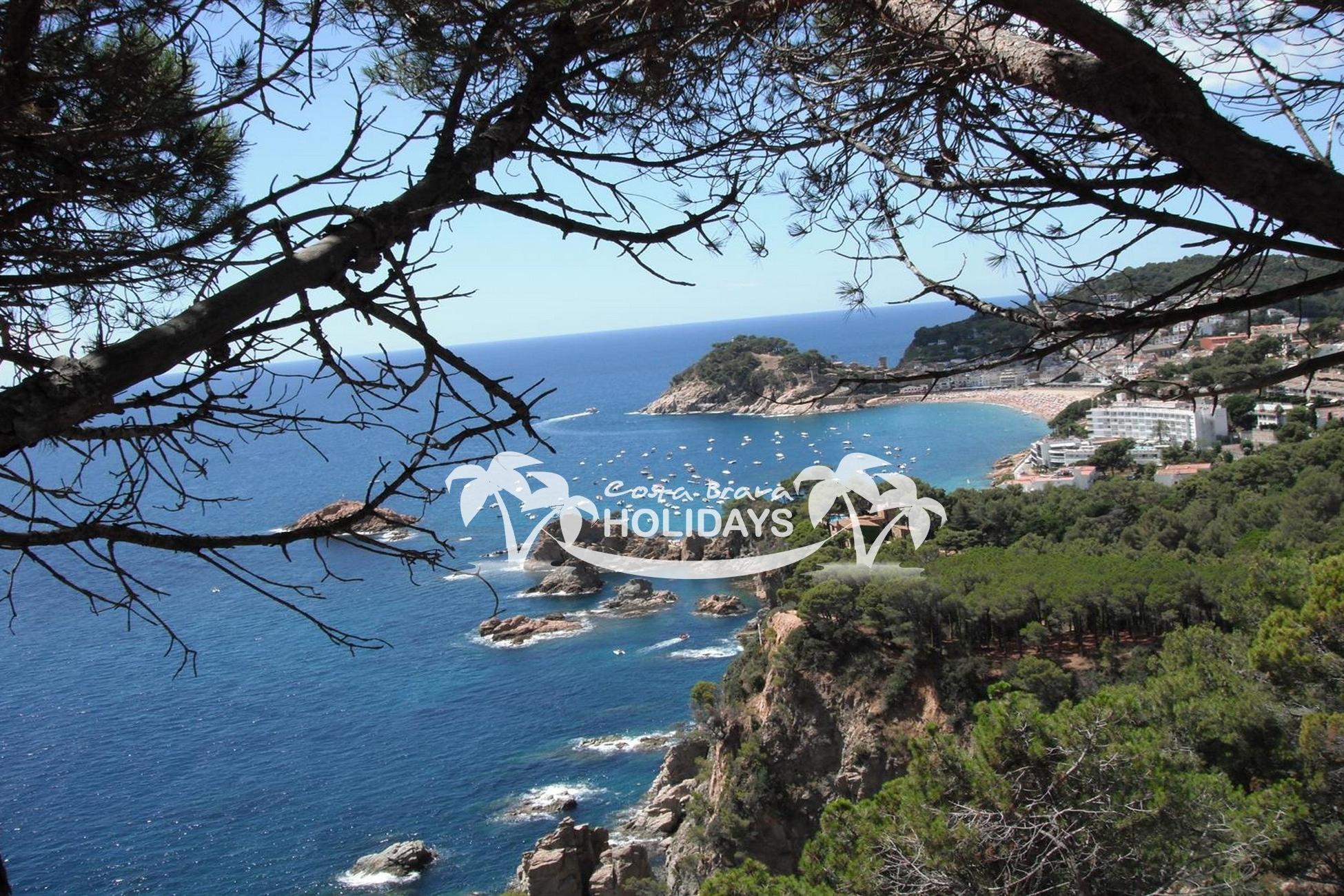 Villa Mimosa van vakantiehuizen spanje (62)